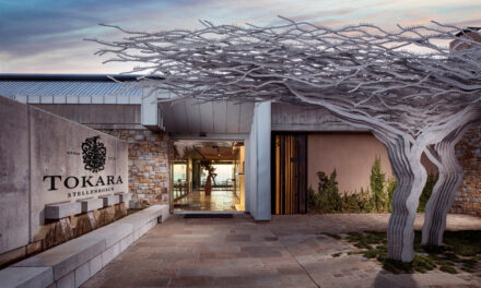 Breathtaking Blend: Tokara Wine Estate