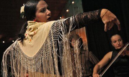 Flamenco Lessons Online